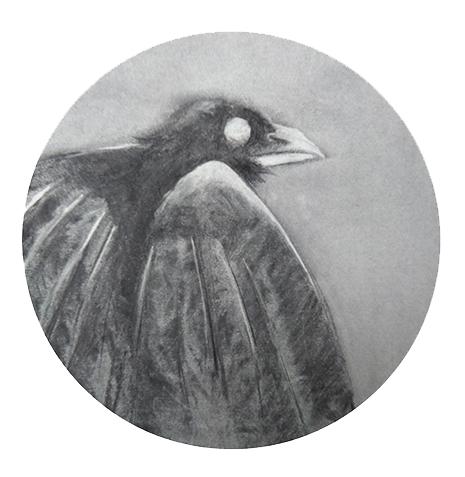 crow tshirt 2